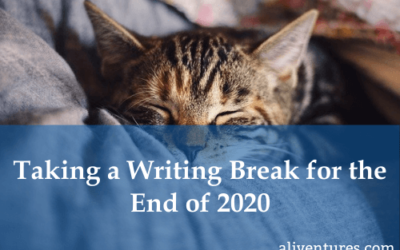 Taking a Writing Break for the End of 2020