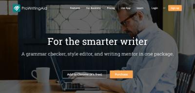 ProWritingAid website